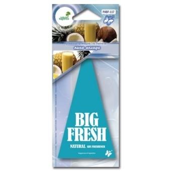 Ароматизатор пластинка Big Fresh PABF-117 (пина колада)