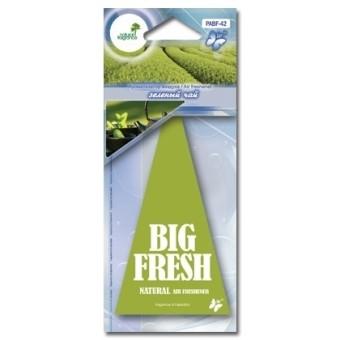 Ароматизатор пластинка Big Fresh PABF-42 (зеленый чай)