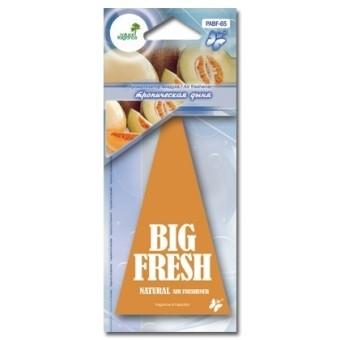 Ароматизатор пластинка Big Fresh PABF-65 (тропическая дыня)